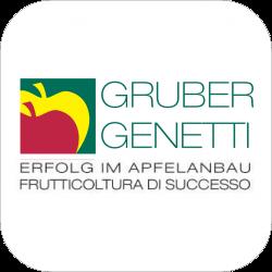 sponsor_gruber_cubo
