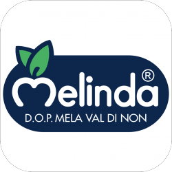 sponsor_melinda_cubo