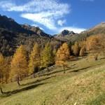 Herbstliche Landschaft auf den Maddalene
