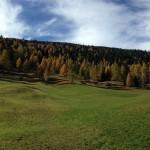 Bäuerliche Landschaft in Proveis